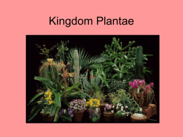Kingdom Plantae - Porterville Unified School District