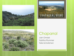 Chaparral - Mercer Island School District