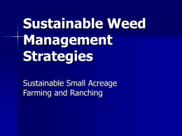 Weed Management - cultivatingsuccess.org