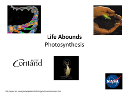 Life Abounds Photosynthesis