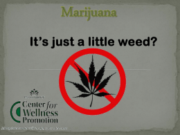 Marijuana - Center for Wellness Promotion