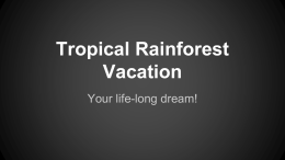 Tropical Rainforest Vacation - Mercer Island School District