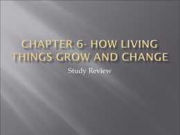 Chapter 6- how living things grow and change
