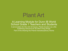 Plant Art-Dunn1 - pypassessment4earlyyears