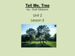 Tell Me, Tree by - Open Court Resources.com