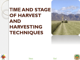 TIME AND STAGE OF HARVEST AND HARVESTING TECHNIQUES