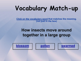 Vocabulary Match-up Click on the vocabulary word