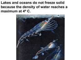 Lakes and oceans do not freeze solid because the density of water
