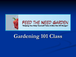 Slide 1 - Feed The Need Garden