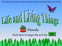 Life and Living Things: Plants