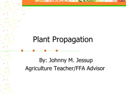 Plant Propagation - Rosholt School District