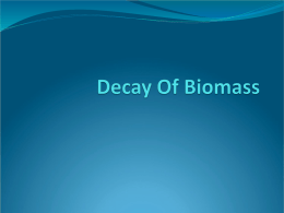 Decay OF Biomass