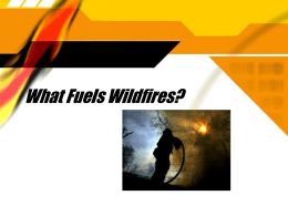 California Wildfires: Causes and Consequences