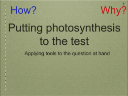 Putting photosynthesis to the test