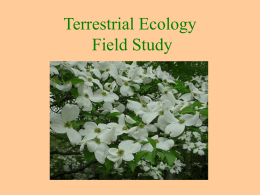 Terrestrial Ecology - MathinScience.info
