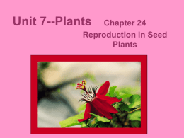 Unit 7--Plants - DigitalWebb.com
