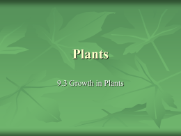 Plants - HRSBSTAFF Home Page