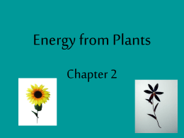 Chapter 2 science powerpoint
