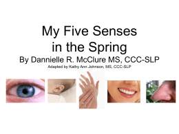 My 5 Senses in the Spring