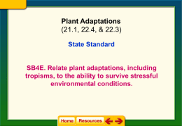Plant Adaptation Notes