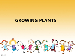 Group 1 - Growing plants