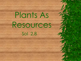 Plants As Resources
