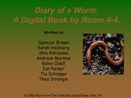 Group 4-4 Worm Book