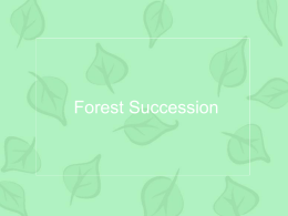 Forest Succession - CHS Science Department: Jay Mull