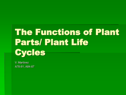 The Functions of Plant Parts/ Plant Life Cycles