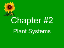 Unit-A-Chapter-2-Plant-Systems