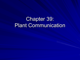 Chapter 39: Plant Communication