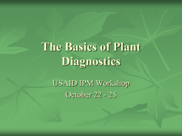 basics-plant-diagnostics-seasia