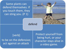 PowerPoint - Plants That Fight Back
