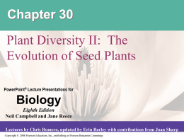 Chapter 30 Plant Diversity II Evolution of Seed Plants