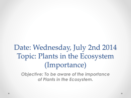Date: Wednesday, July 2nd 2014 Topic: Plants in the Ecosystem