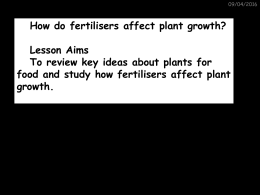 hOw do fertilisers affect growth