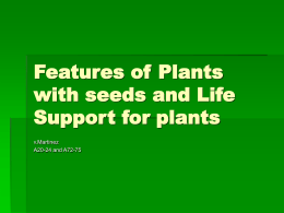 Features of Plants with seeds and Life Support for plants