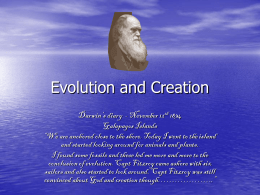 Evolution and Creation
