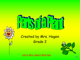 Parts of a Plant - Mrs. Hagen`s Web Page