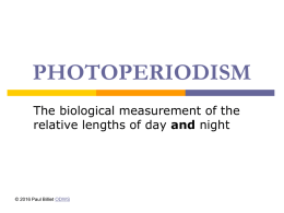 Powerpoint Presentation: Photoperiodism