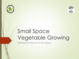 vegetable growing in small spaces