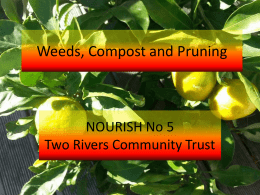 Weeds, Compost and Pruning - Two Rivers Community Trust