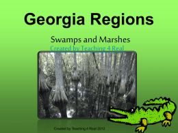 GeorgiaRegionsSwampsandMarshes