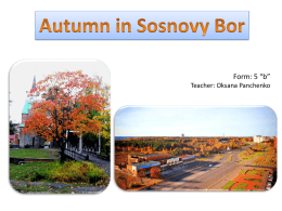 Autumn in Sosnovy Bor