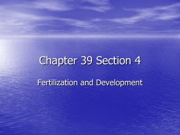 Chapter 39 Section 4