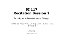 BI117 Recitation Session 1