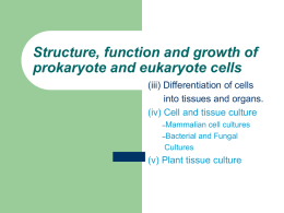Structure, function and growth of prokaryote and eukaryote cells