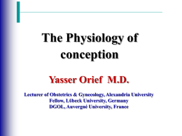 Physiology of conception