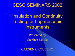 CESO SEMINARS 2002 Insulation Testing and Continuity for