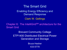 The Smart Grid Enabling Energy Efficiency and Demand Response